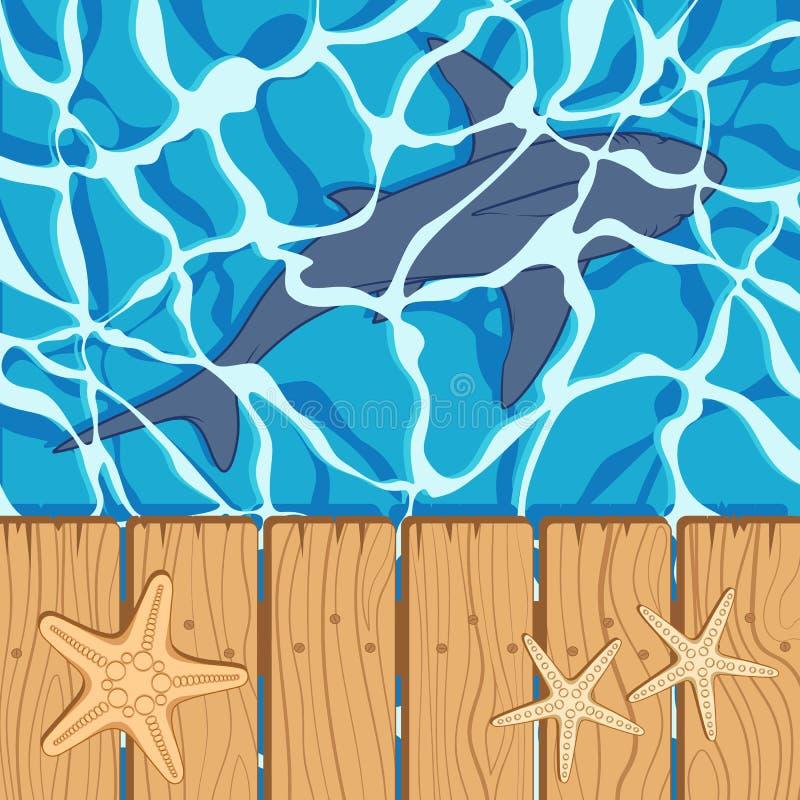 Mariene kleurenachtergrond met grote witte haai en zeester De zomer vectorachtergrond vector illustratie