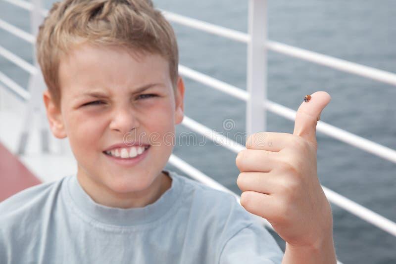 Marienkäfer auf großem Finger des kleinen Jungen stockfotos