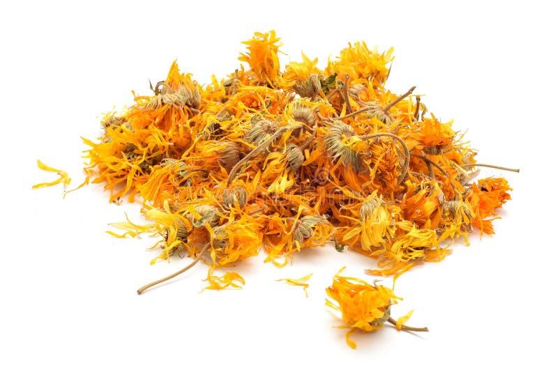 Marigold dry tea flowers. Calendula officinalis or Marigold dry tea flowers royalty free stock images