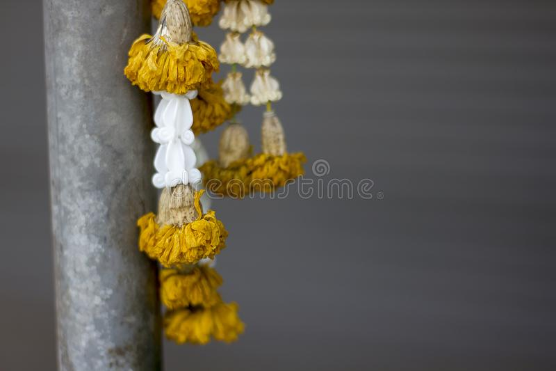 Marigold flower garland was hung to dry. royalty free stock photos