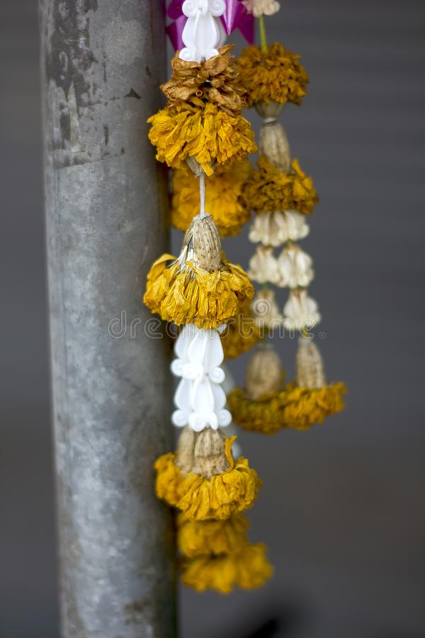 Marigold flower garland was hung to dry. stock photo