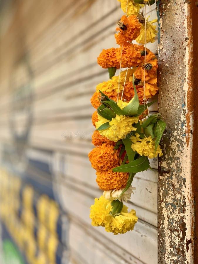 Marigold Flower garland, worship offering stock photography