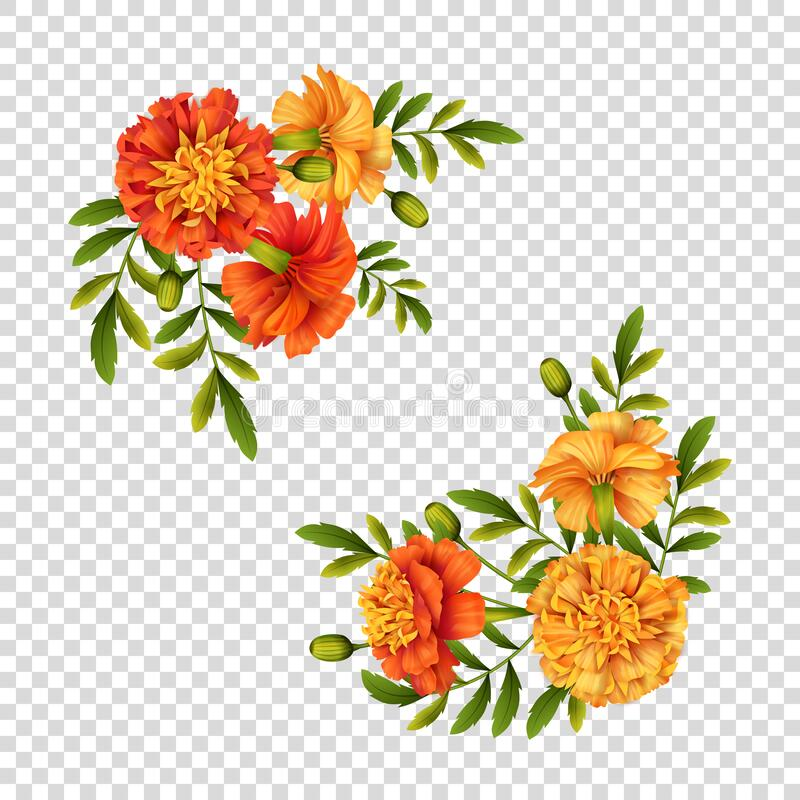Free Marigold Flowers Design Royalty Free Stock Photography - 198639267