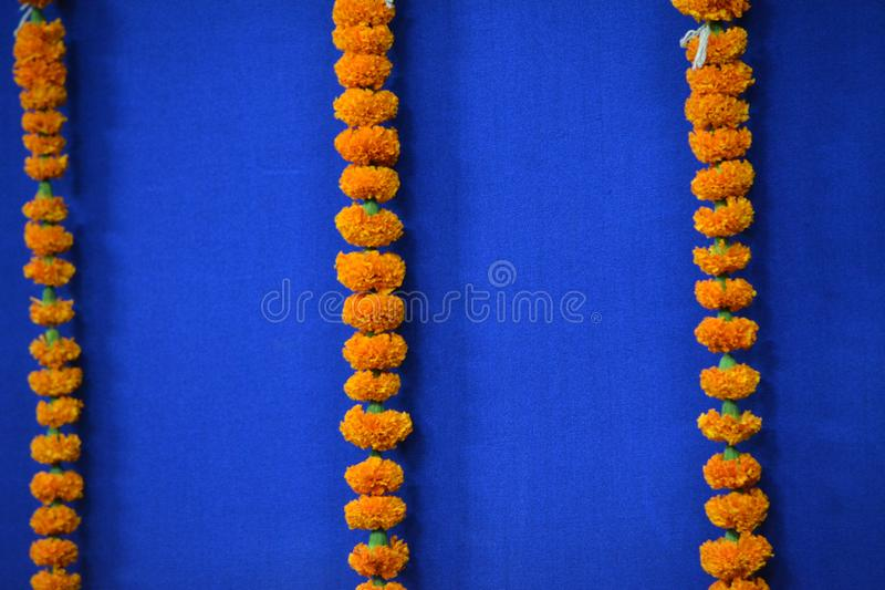 Marigold Flowers For Long Garland stock photo