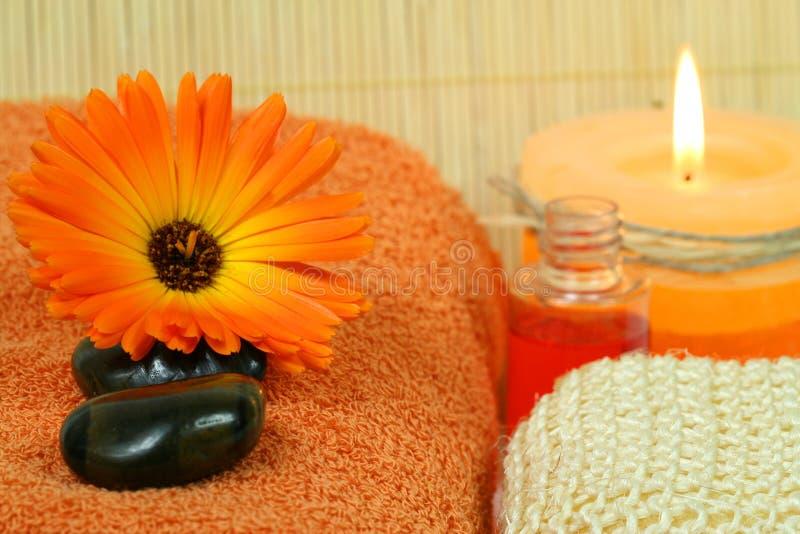 Marigold para a terapia da beleza imagem de stock