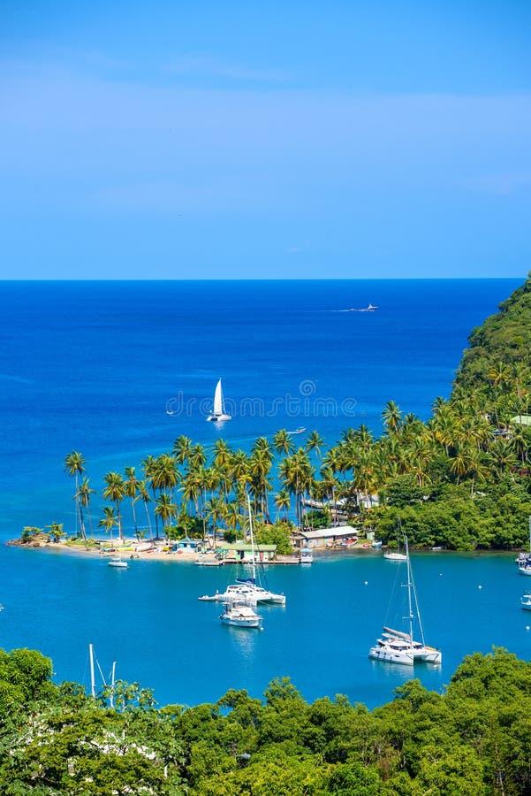 Marigot zatoka, ?wi?ty Lucia, Karaiby Tropikalna zatoka i plaża w krajobrazowej scenerii egzota i raju Marigot zatoka lokalizuje  obrazy stock