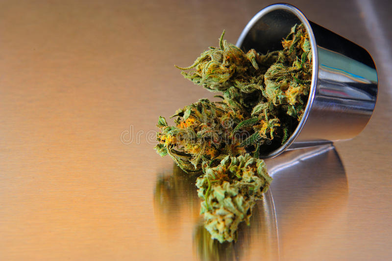 Marihuana royalty free stock photo