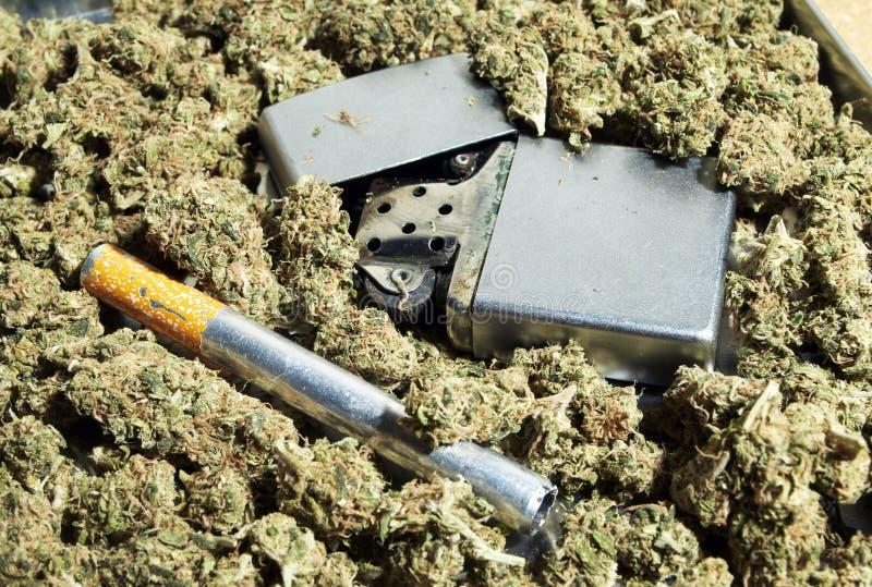Marihuana stock foto's