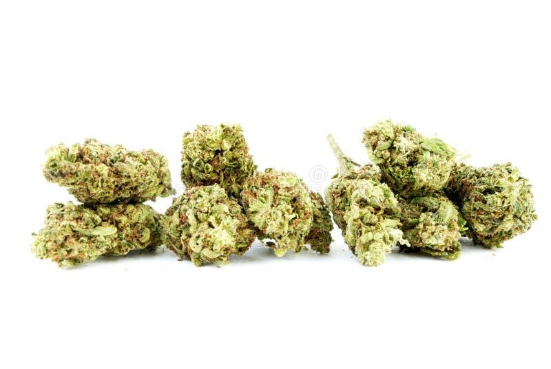 Marihuana royalty-vrije stock fotografie