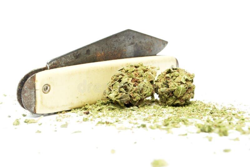 Marihuana stock afbeelding