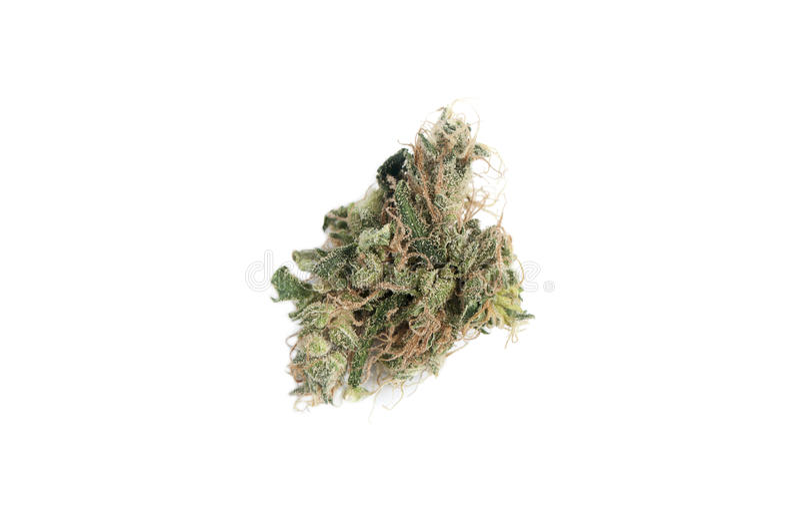 Marihuana, obraz stock