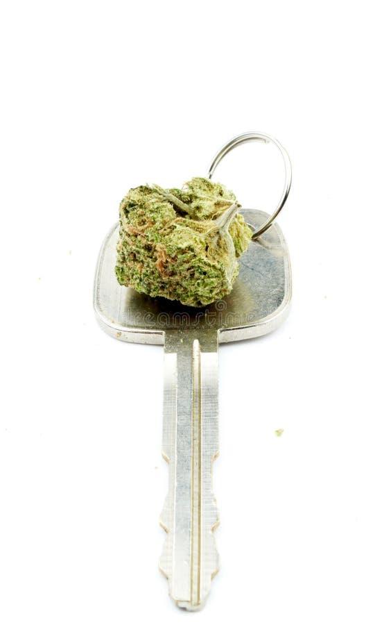 Marihuana, Autosleutel, die onder de Invloed drijven stock afbeeldingen