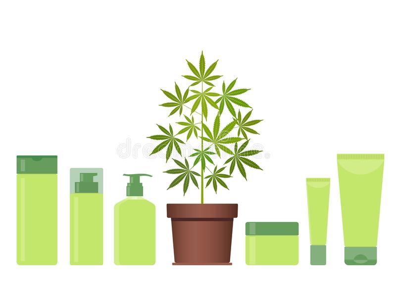 Marihuana of cannabisinstallatie in pot met hennepcosmetischee producten Room, shampoo, vloeibare zeep, gel, lotion, balsem stock illustratie