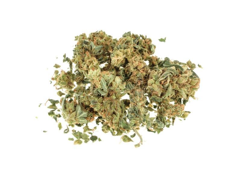 Marihuana die op witte achtergrond wordt geïsoleerd royalty-vrije stock foto's