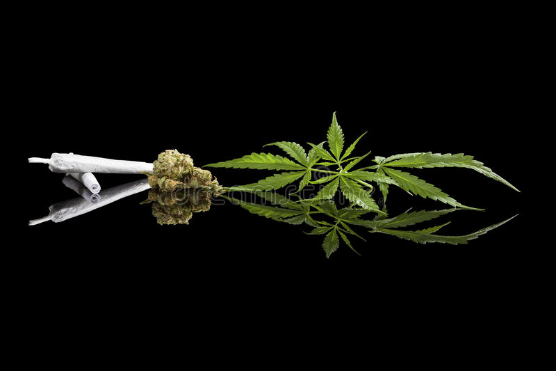 Marihuana-Hintergrund stockfoto