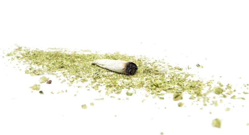 Marihuana i marihuana obraz royalty free