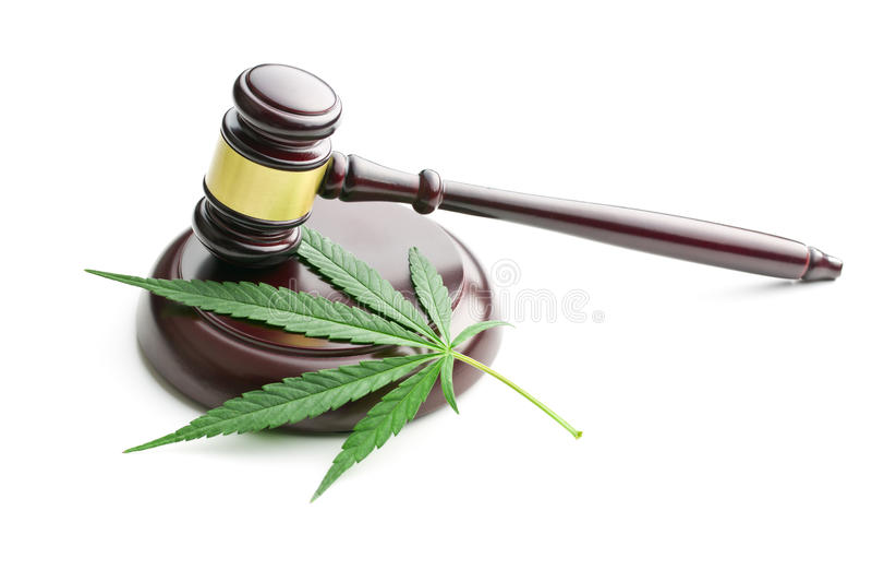 Marihuana liść i sędziego młoteczek zdjęcia royalty free