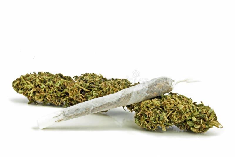 Marihuana met een verbinding stock afbeelding