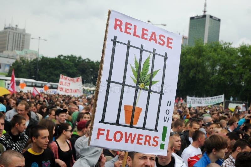marihuana protest zdjęcie royalty free