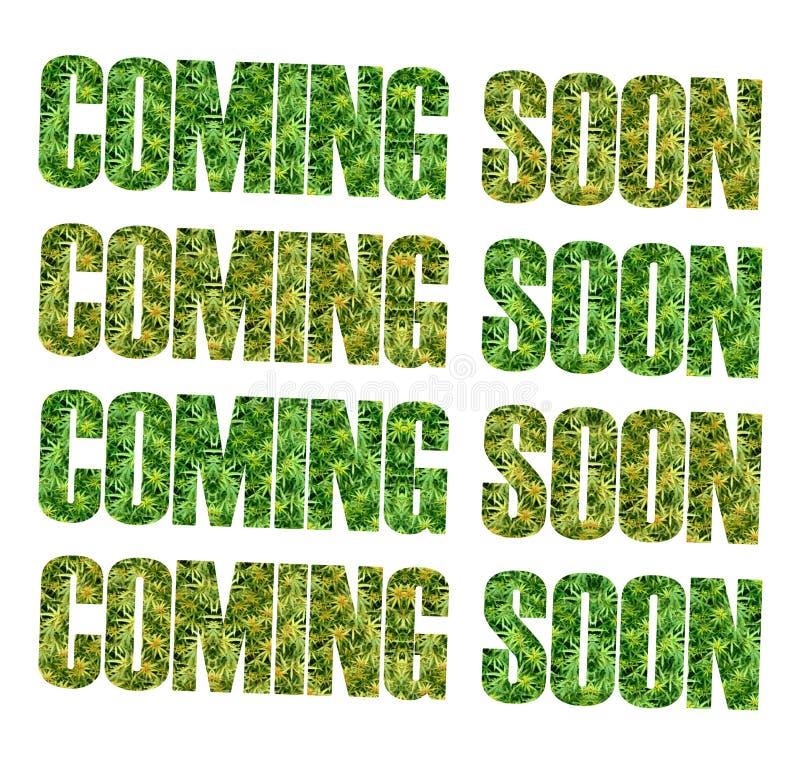 Marihuana RX stock afbeelding