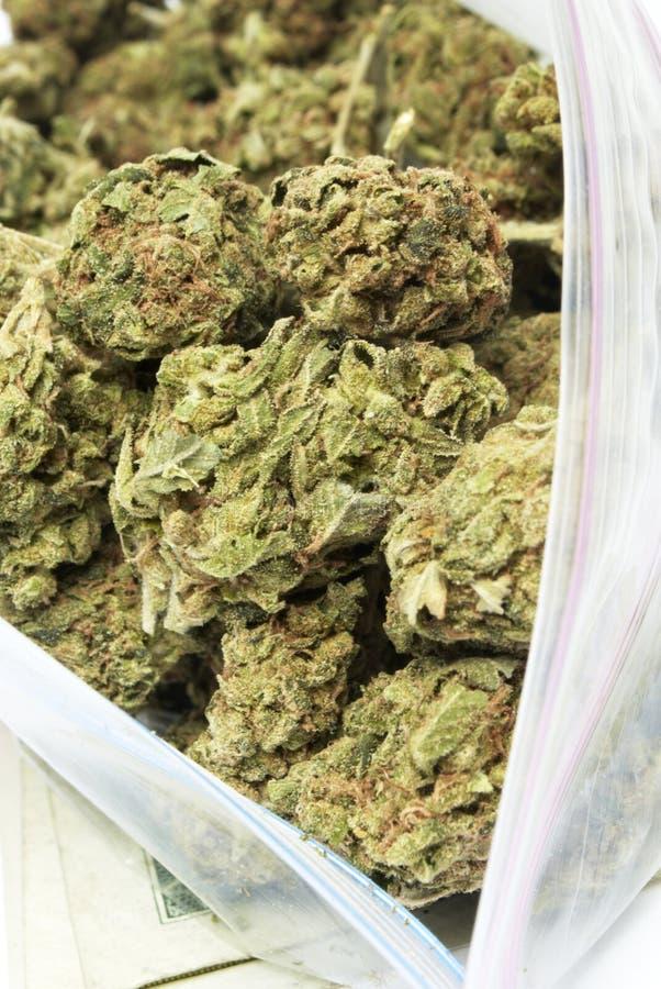Marihuana, torba świrzepa fotografia royalty free