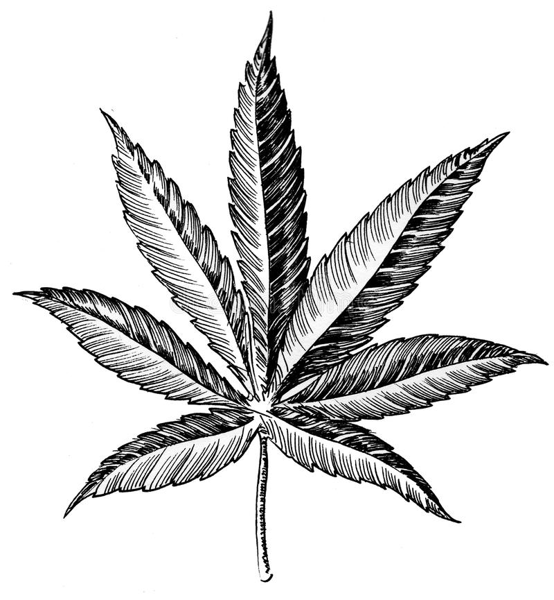 Marihuana urlop royalty ilustracja