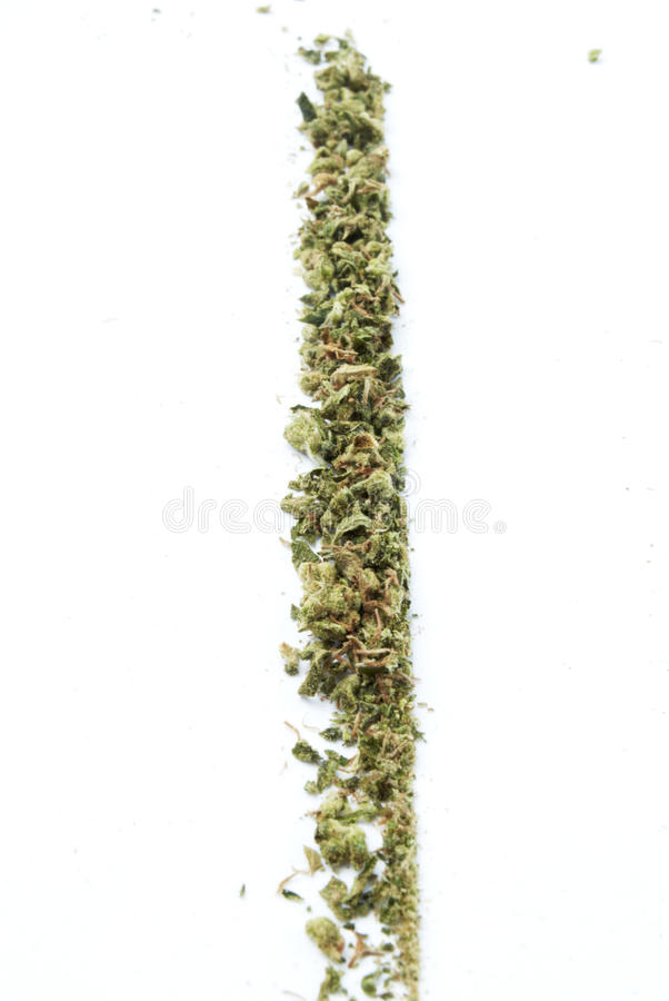 Marihuana, Witte Achtergrond royalty-vrije stock afbeelding