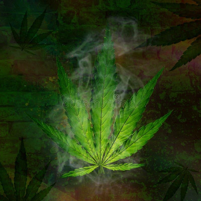 marihuana zasadza potomstwa royalty ilustracja