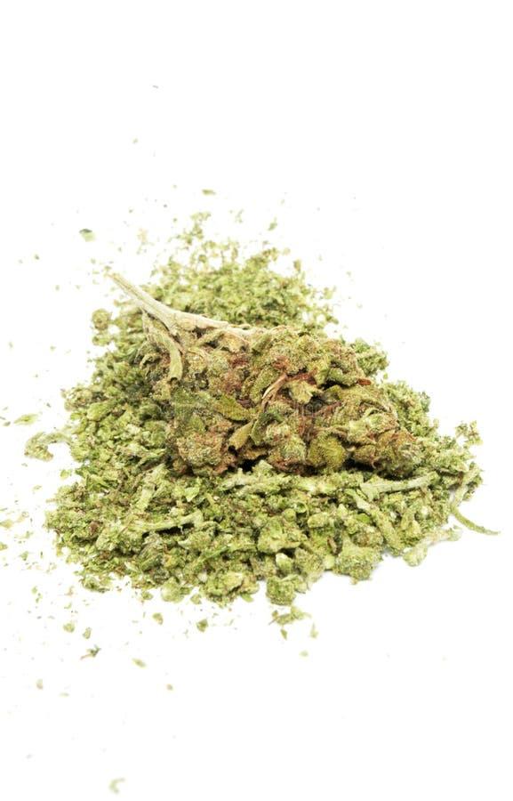Marihuana, zyski ze sprzedaży narkotyków fotografia royalty free