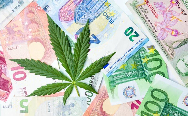 Marihuanabladeren en geldrekeningen stock fotografie