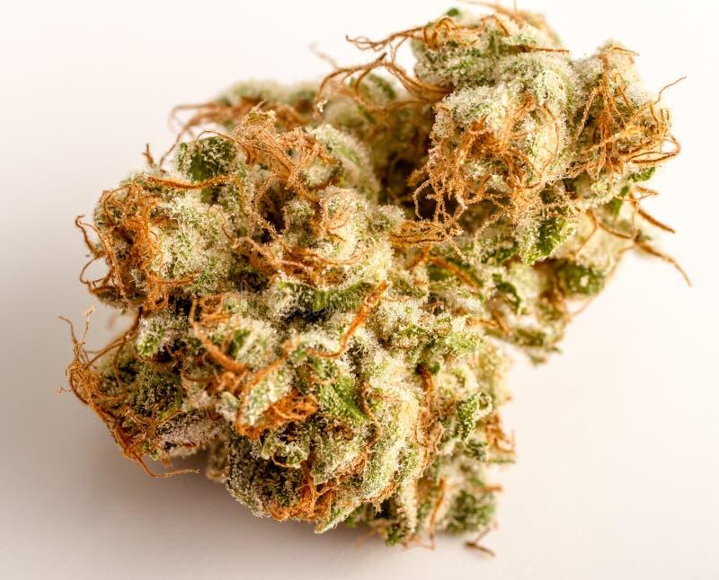Marihuanaknoppen stock foto's