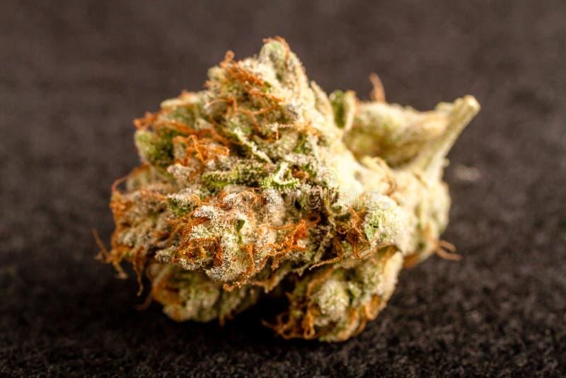 Marihuanaknoppen stock foto