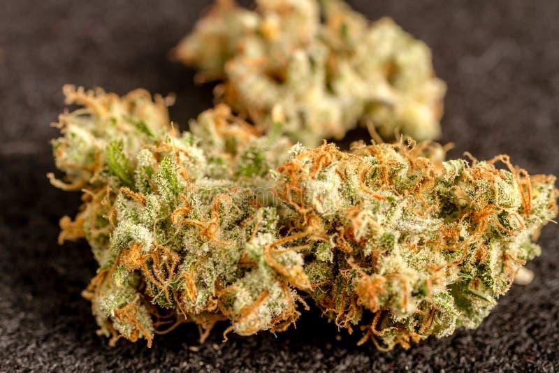 Marihuanaknoppen royalty-vrije stock afbeeldingen