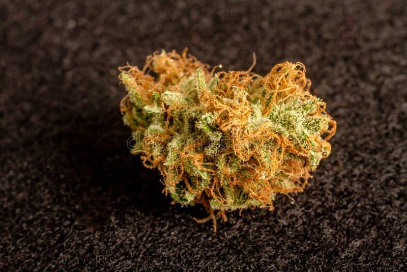 Marihuanaknoppen royalty-vrije stock foto's