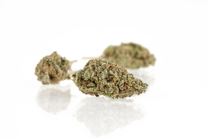 Marihuanaknoppen royalty-vrije stock foto