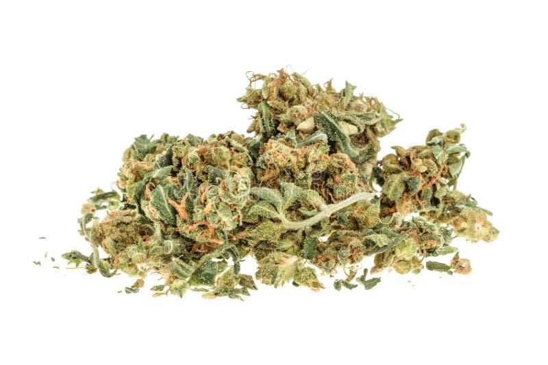 Marihuanaknoppen op witte achtergrond worden geïsoleerd die zonder schaduw royalty-vrije stock foto's