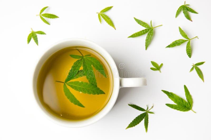Marihuanakräutertee- und -Hanfblätter stockbilder