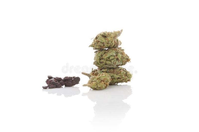 Marihuanamisbruik royalty-vrije stock afbeeldingen