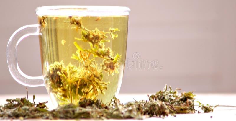 Marihuany zio?owa herbata zdjęcie royalty free