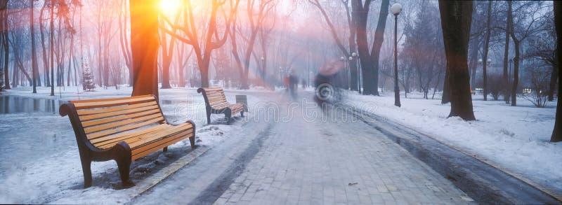 Mariiinskypark royalty-vrije stock fotografie