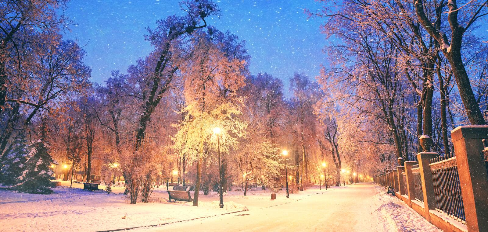 Mariinsky garden during inclement weather. Has its charm and Sharm glow lamps, soft snow- winding paths and roads - is a favorite place of citizens of the stock photo