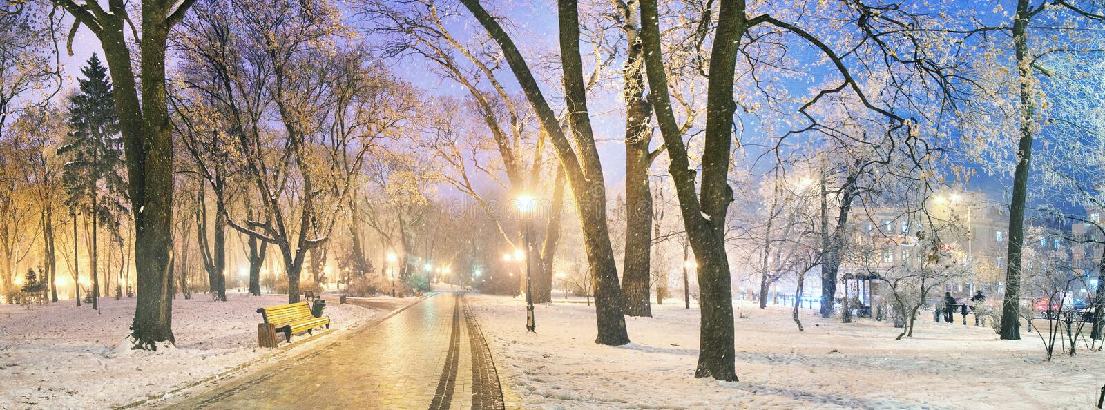 Mariinsky garden during inclement weather. Has its charm and Sharm glow lamps, soft snow- winding paths and roads - is a favorite place of citizens of the royalty free stock images