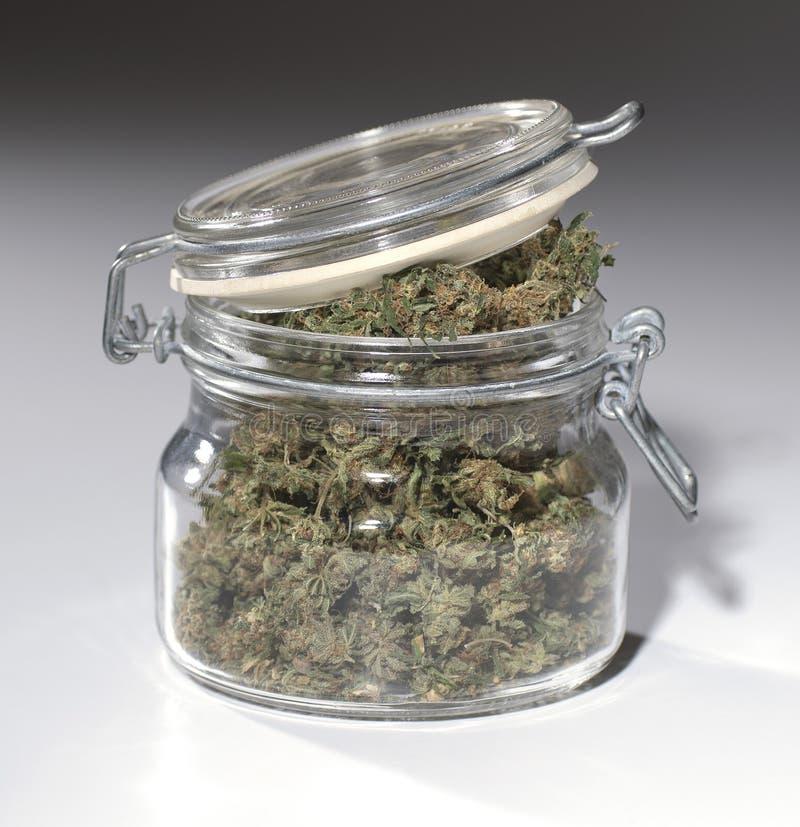 Marijuana-2 obraz stock