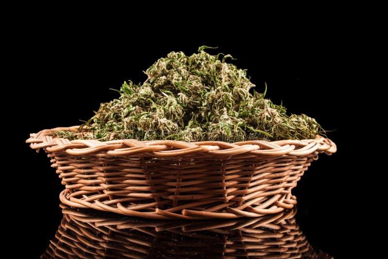 marijuana royaltyfri bild
