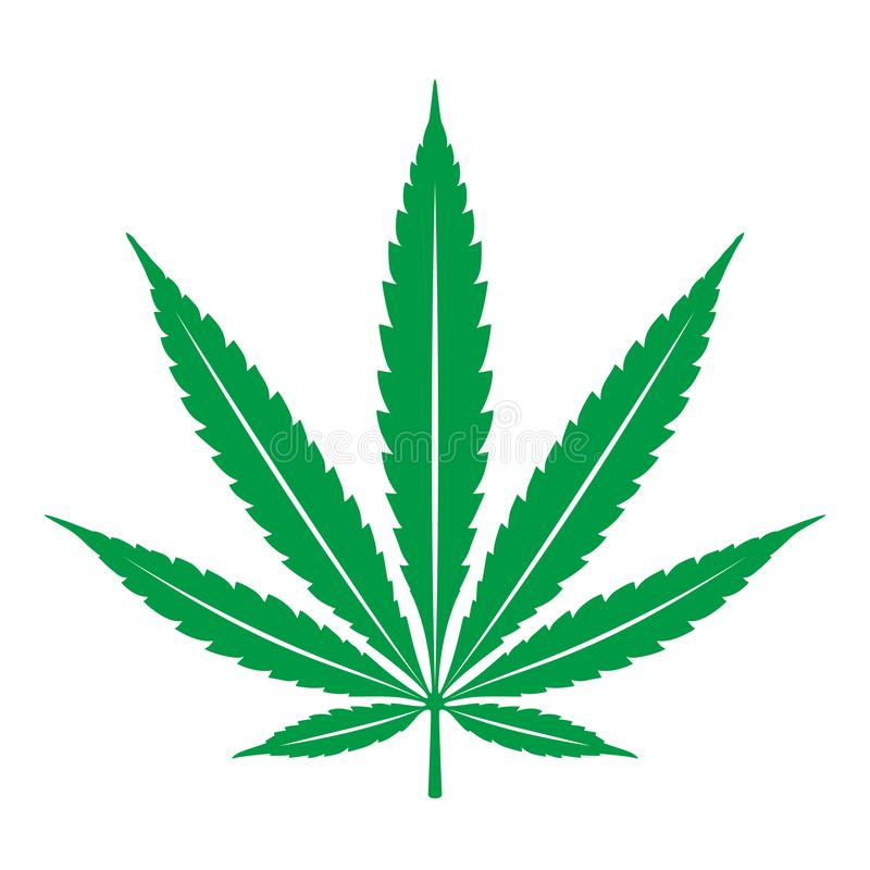 Marijuana cannabis leaf weed icon logo clip art illustration graphic. Green vector illustration