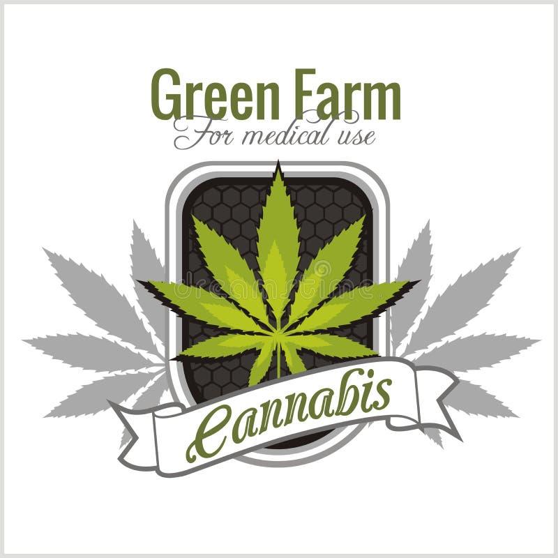Marijuana - cannabis. For medical use. Vector set. vector illustration