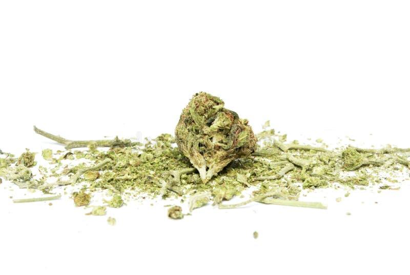 Marijuana. And Cannabis on White Background stock photos
