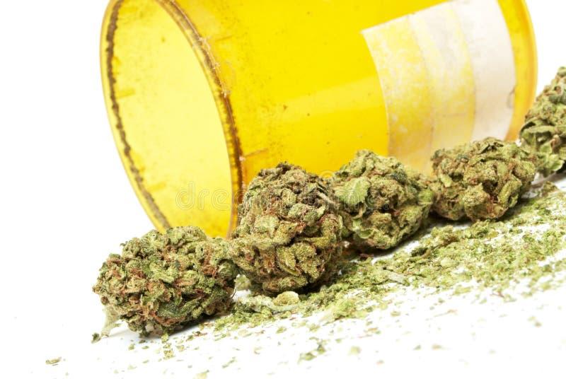 Marijuana. And Cannabis on White Background royalty free stock image