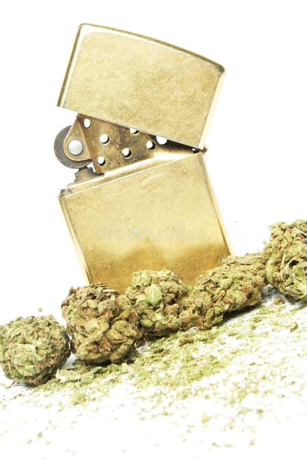 Marijuana. And Cannabis on White Background stock images