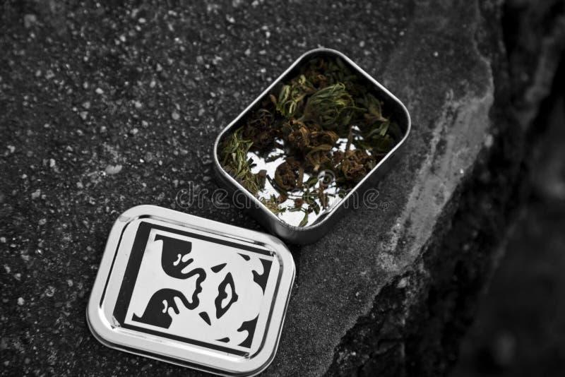 Marijuana en una caja foto de archivo libre de regalías